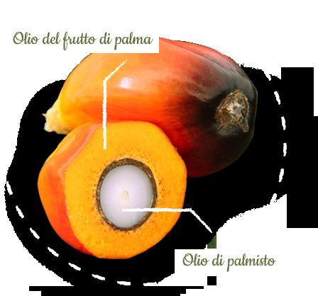 Olio di palma vegetale